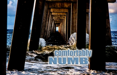WE'RE ALL JUST COMFORTABLY NUMB
