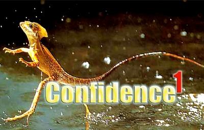 Confidence Part 1